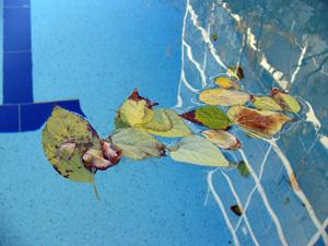 l 39 hivernage actif pour la piscine astuces et conseils pour le bassin piscines du monde le blog. Black Bedroom Furniture Sets. Home Design Ideas